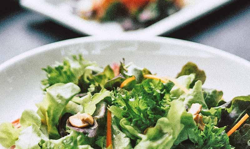 Gourmet und Wellness Hotel Salat Buffet