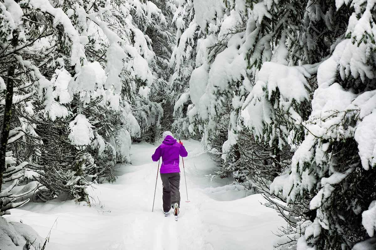 Langlaufen im Bayerischen Wald